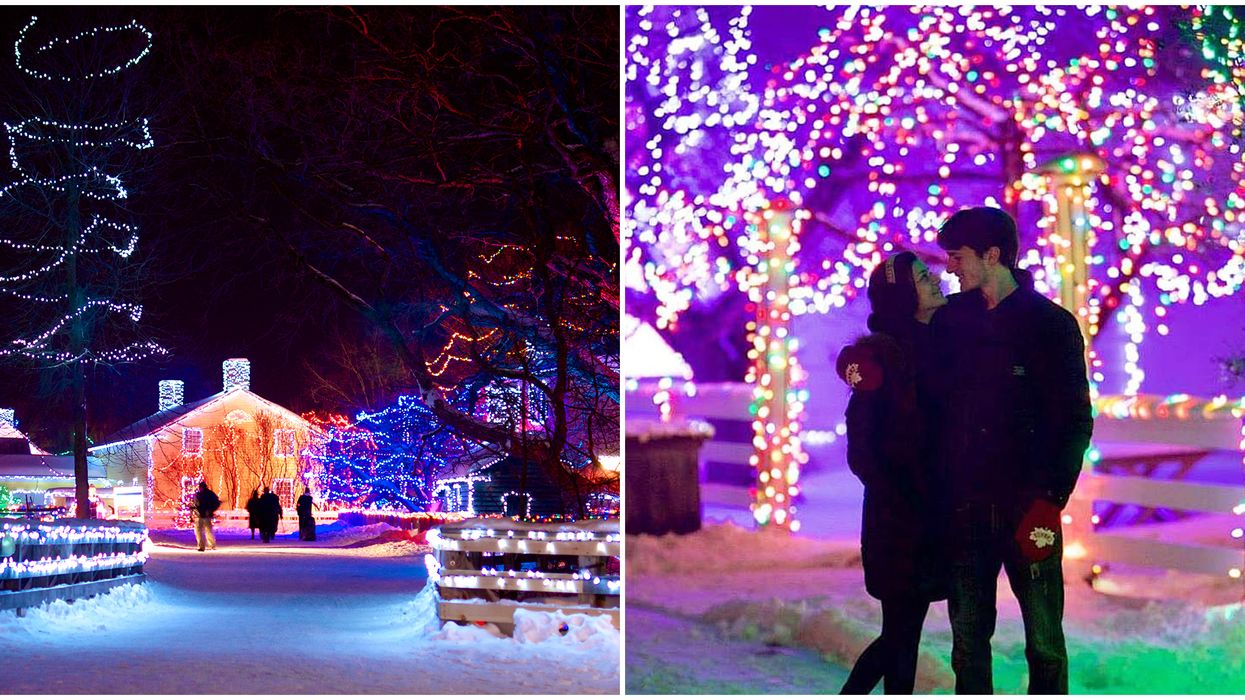 Alight At Night In Ontario Opens This Weekend & It Looks So Magical