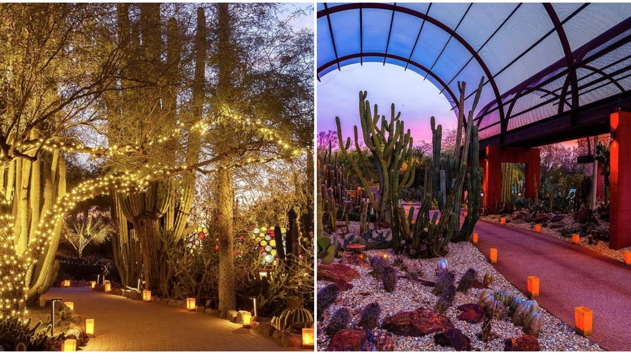 You Can Now Get Lost In A Labyrinth Of Twinkling Lights In The Arizona Desert