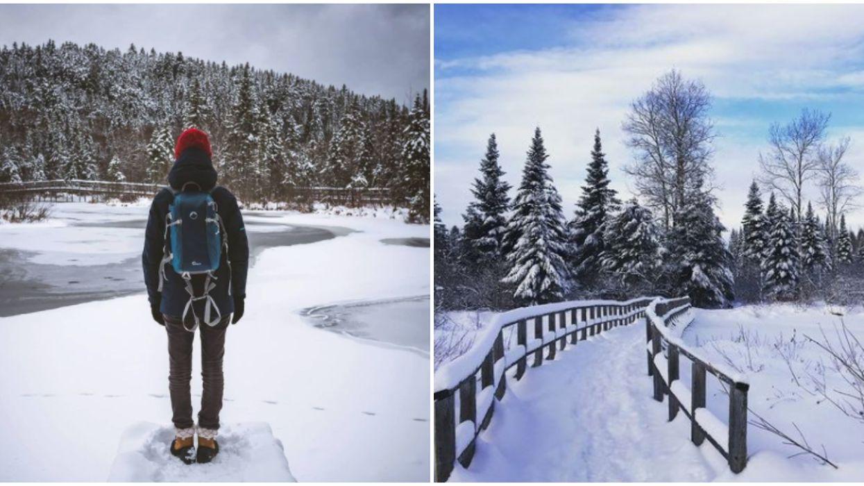 Cet endroit isolé tout près de Québec est idéal pour t'évader avec ta personne cet hiver