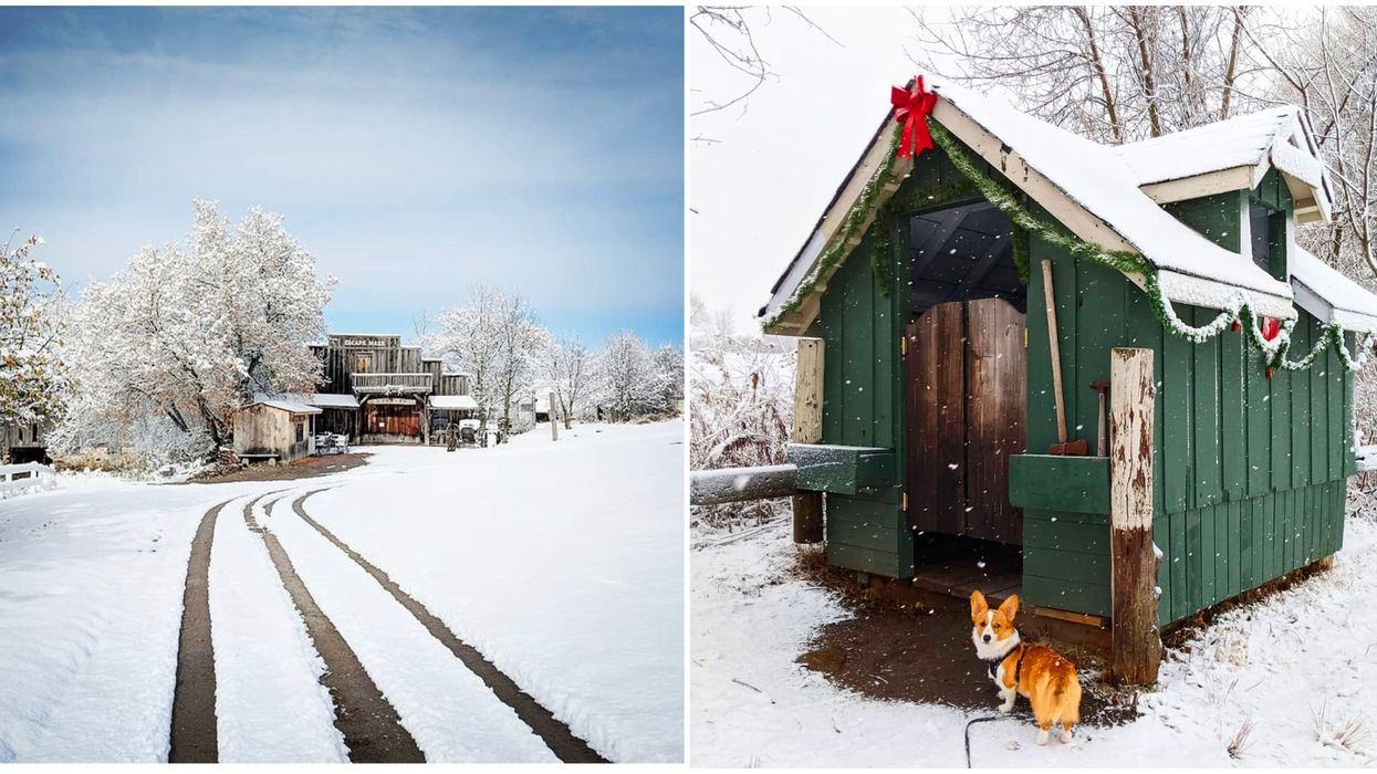 Ontario's 2-Km Holiday Escape Trail Will Lead You Through A Snowy Forest & Festive Village
