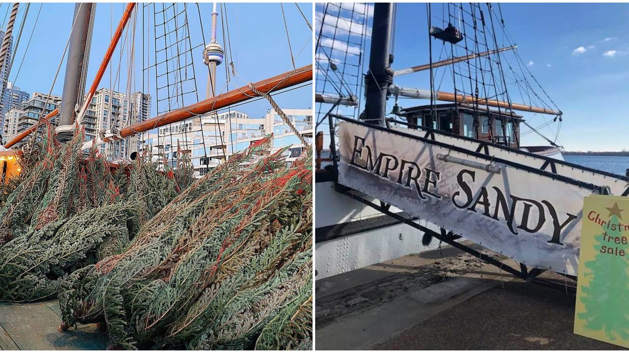 A Toronto Tall Ship Just Transformed Into A Christmas Tree Market & You Can Shop On Board