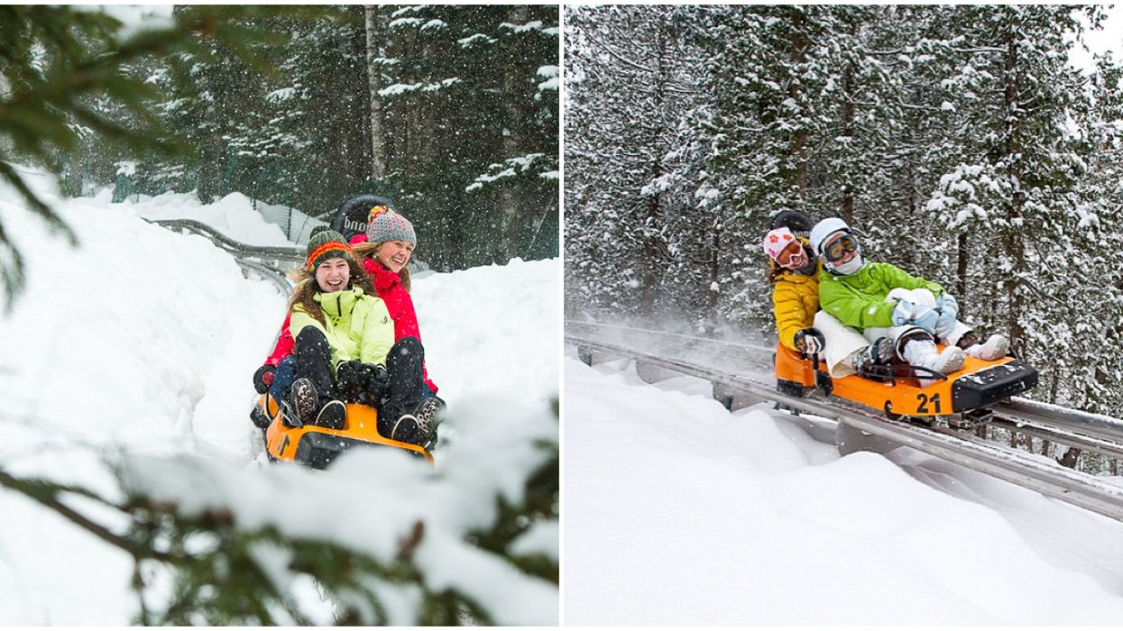 The Viking In Saint-Sauveur Is A Thrilling 1.5-km Winter Mountain Coaster