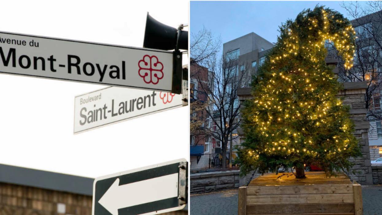 Des sapins de Noël du boulevard Saint-Laurent ont été volés par le «Grinch du Boulevard»