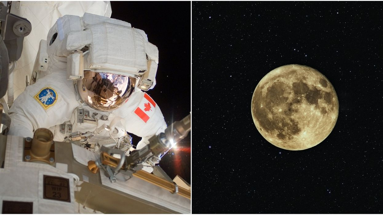 NASA Moon Mission Will See A Canadian Astronaut Orbit The Moon In 2023