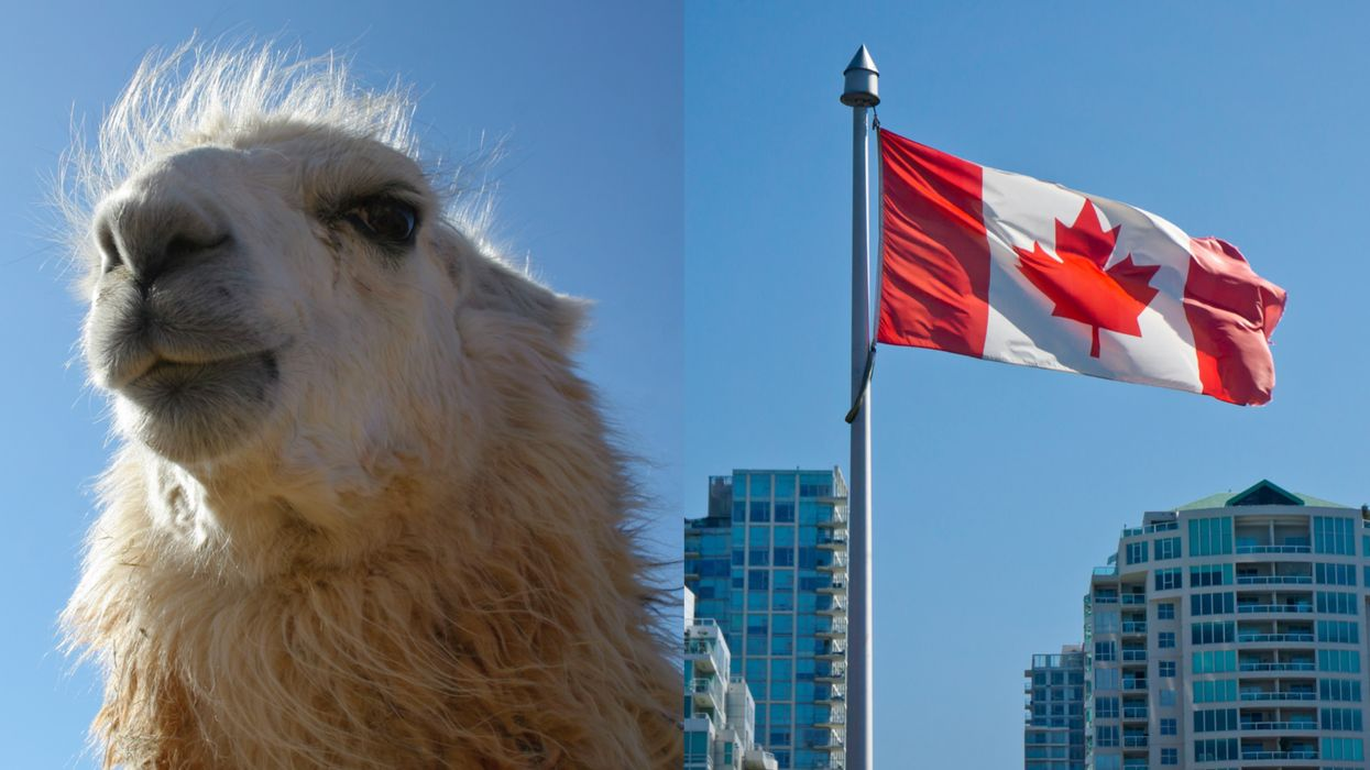 13 Weird Canadian Laws That Actually Exist In Each Of Canada's Provinces and Territories