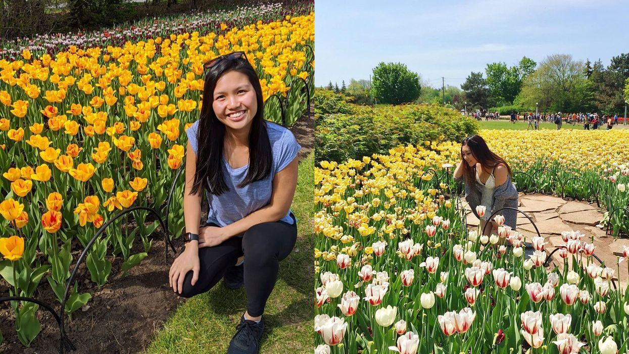 Tulip Festival In Ottawa Is Returning With 300,000 Flowers But It Will Be Very Different