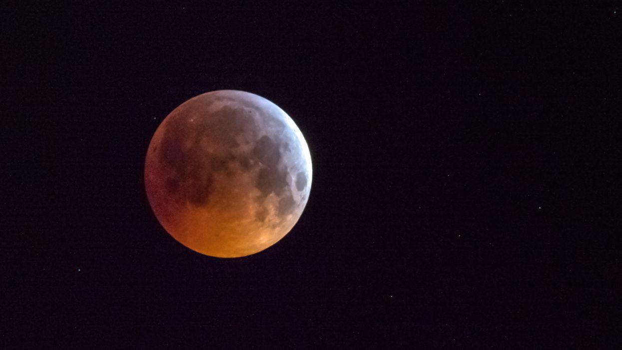Wolf Moon January 2021