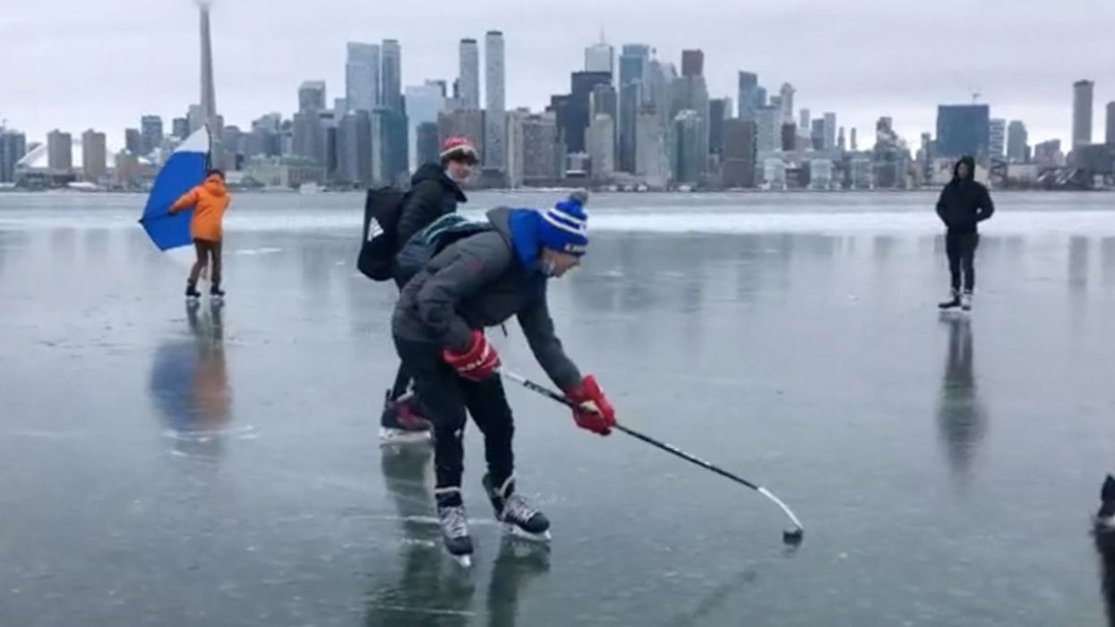 Torontonians And Their Dogs Are Frolicking All Over The City's Frozen Waters (VIDEO)