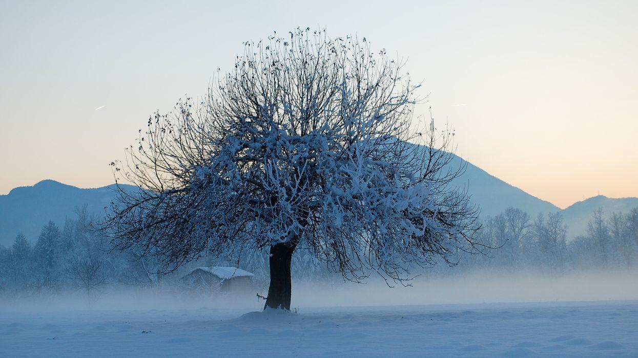 Des froids extrêmes sont attendus partout au Canada et le Québec s'en tire bien