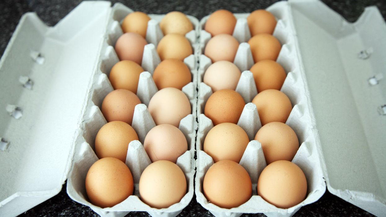 A Salmonella Outbreak Has Been Announced In 2 Provinces & It's Coming From Eggs