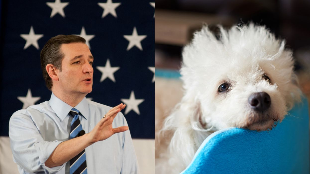 Ted Cruz Left Someone Very Special Behind For Cancun & People Are Very Upset