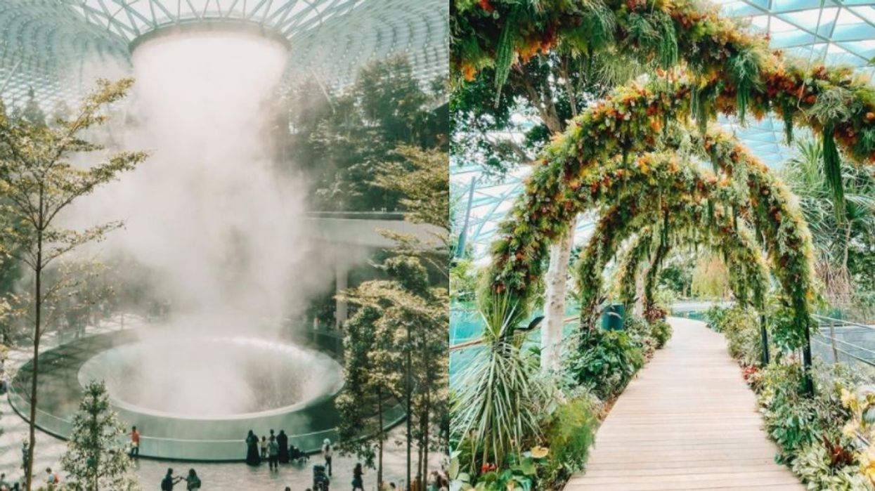 The World's Best Airport In Singapore Will Take Your Breath Away (PHOTOS)