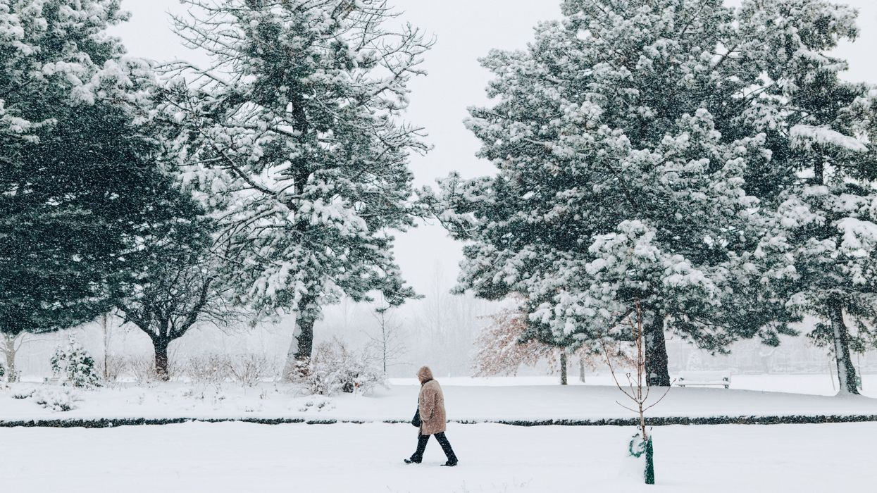 Ontario Is Getting Blasted With 'Potentially Damaging' Winter Weather This Week
