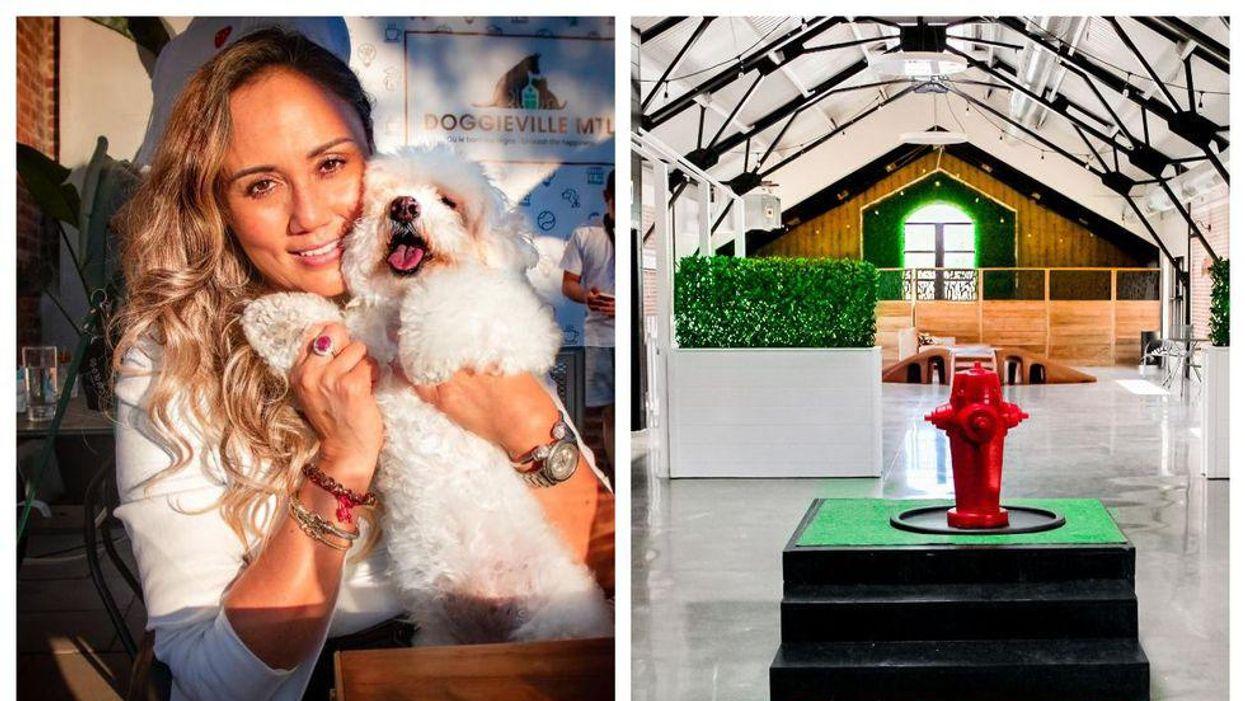 Tu pourras «bruncher» avec ton chien dans ce café à Montréal et ça ouvre ce mois-ci