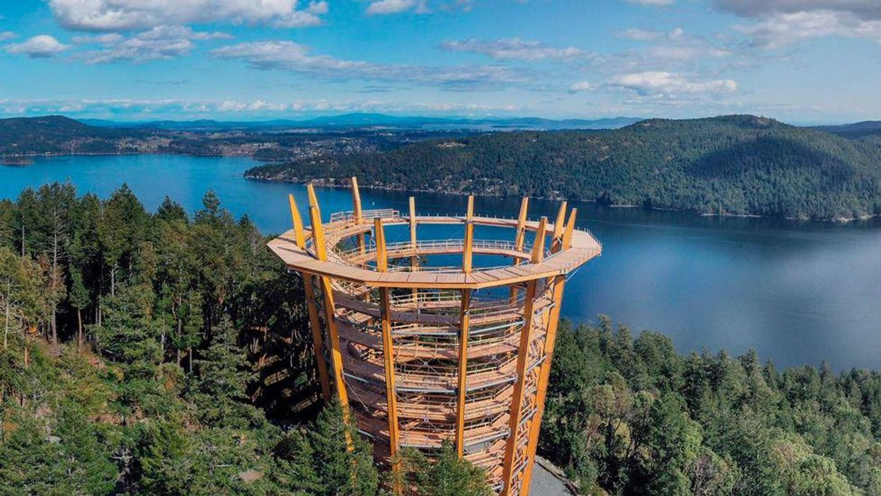 You Can Visit The New Malahat Skywalk On Vancouver Island
