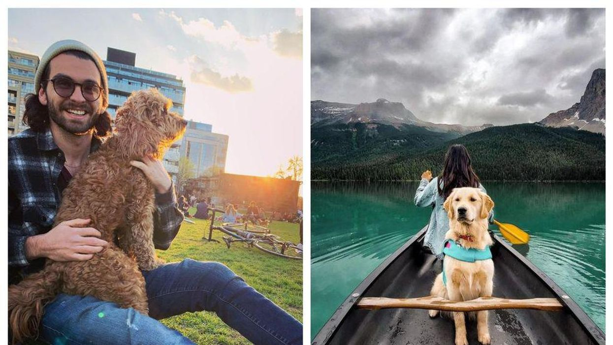 7 Fun Things To Do With Your Dog This Summer In Canada