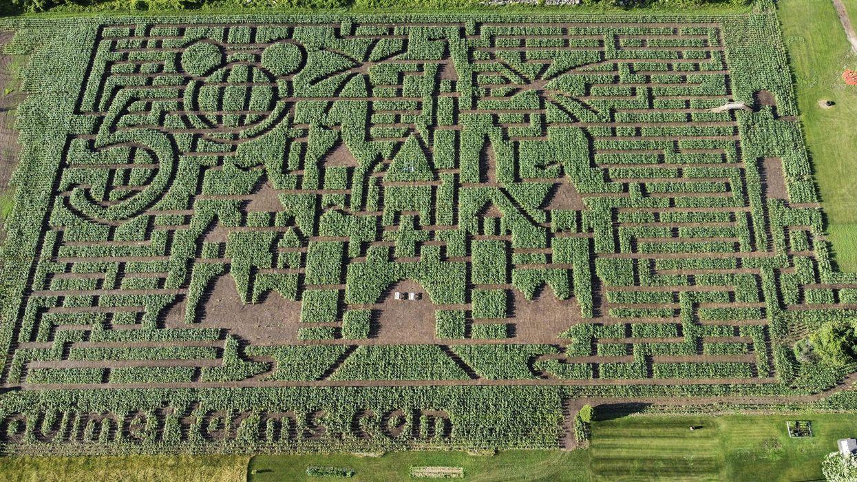 Ce labyrinthe de maïs à 1 h 30 de Montréal au Ouimet Farms Adventure est géant