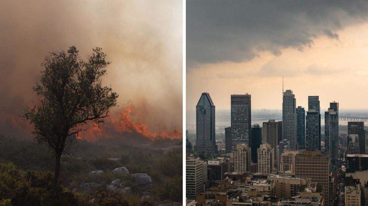Changements climatiques : Le Québec sera durement touché dans le futur