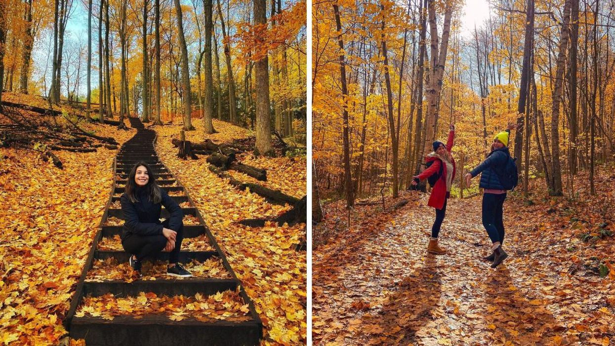 This Fall Hike Near Toronto Will Have You Climb 99 Steps Through The Forest