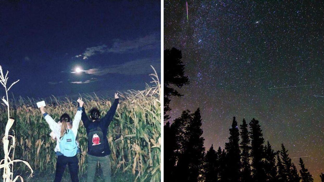 Ferme BM Forget : Le labyrinthe de maïs dans le noir ouvre pendant les Perséides