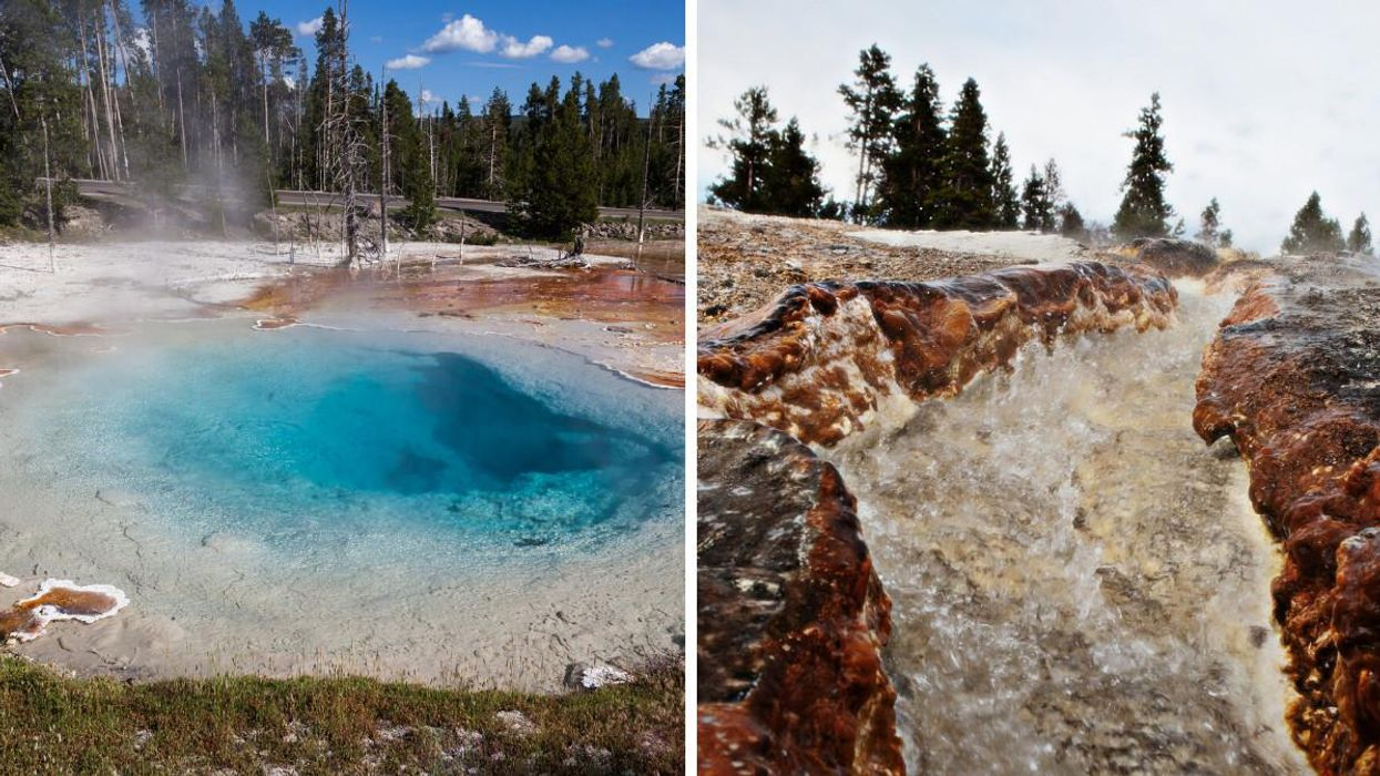 A Woman Was Jailed For Exploring A Deadly Area Of Yellowstone National Park