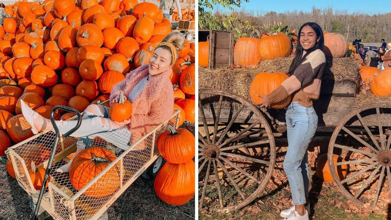 8 Pumpkin Patches Near Ottawa That Are So Cute You Won't Believe Your Pies