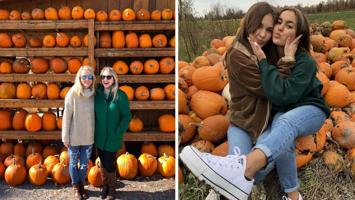 Ottawa's Pumpkin Festival Is Happening This Month & It's Serious Squash Goals