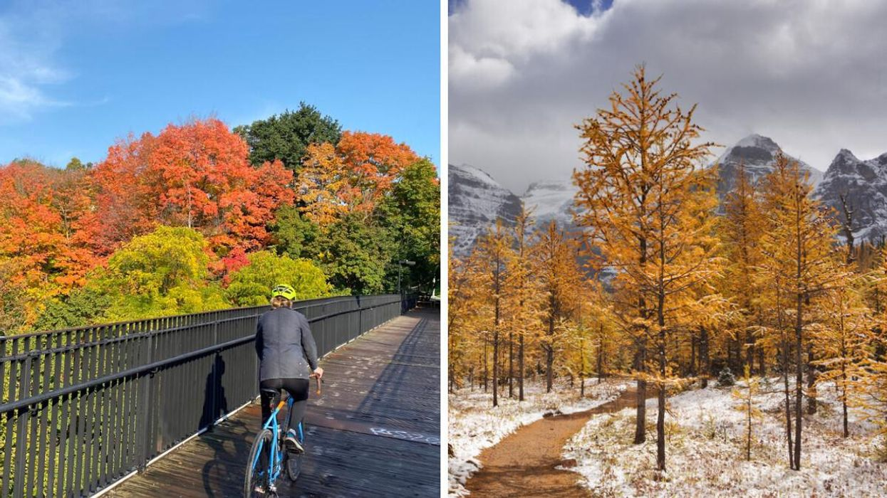 The Month-By-Month Fall Forecast For Each Province Is Out & Nobody Will Escape Snow
