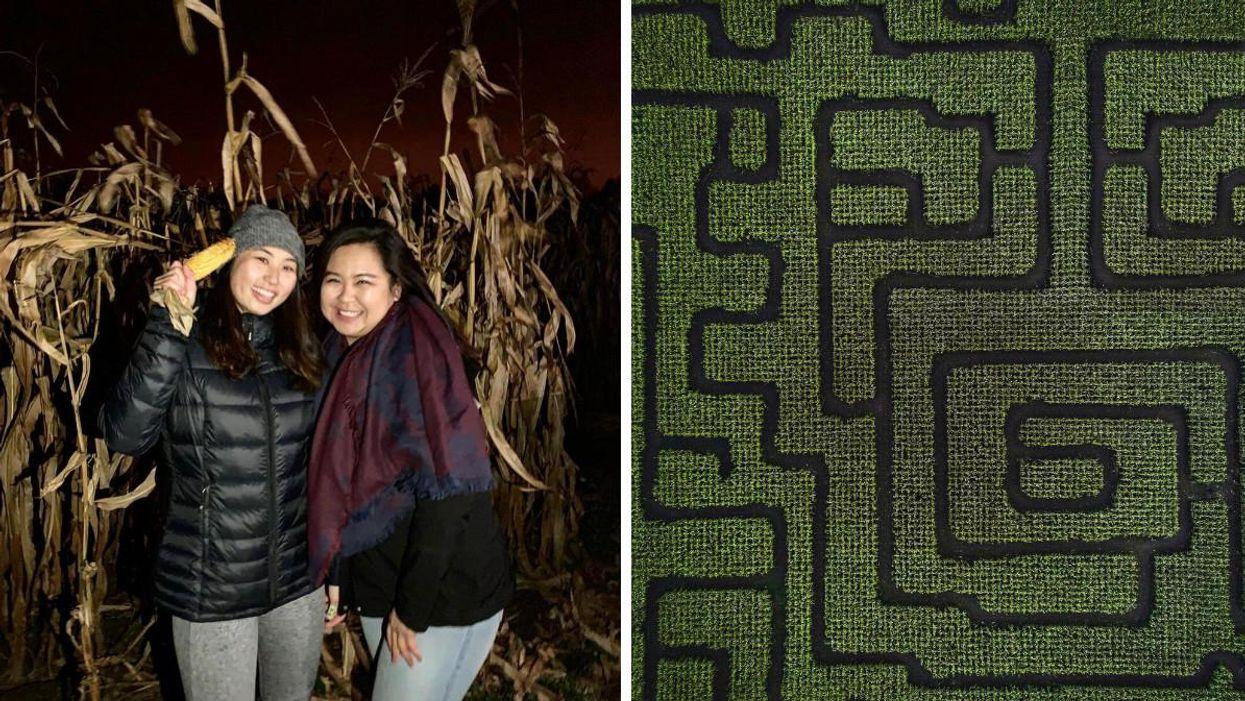 This Ontario Corn Maze Is Open After Dark & You Only Have A Flashlight To Help You Escape