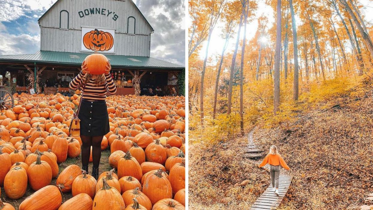 8 Stunning Spots Near Toronto Where You Can Have An Unbe-leaf-able Fall Photoshoot
