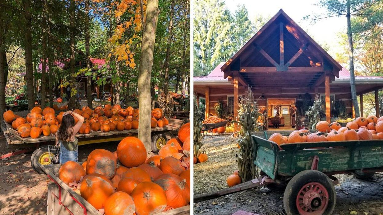 This Farm Near Toronto Has Pumpkin Spice Everything & It's Like Being In A Fall Fairytale