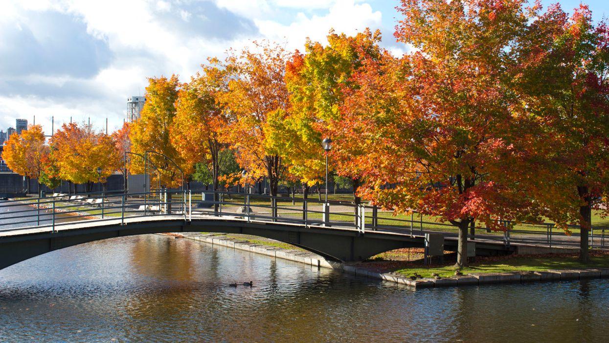 10 façons de profiter au maximum de l'automne à Montréal
