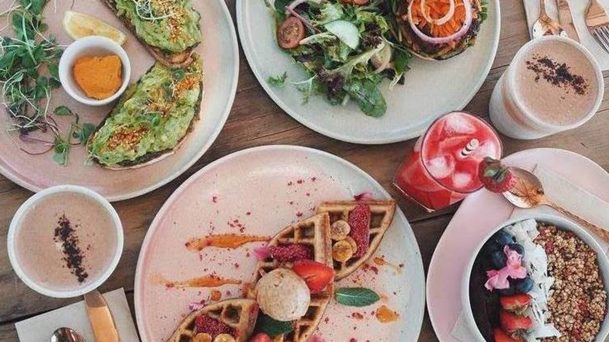 Ce nouveau restaurant vegan de Montréal offre le brunch et tu vas l'adorer!