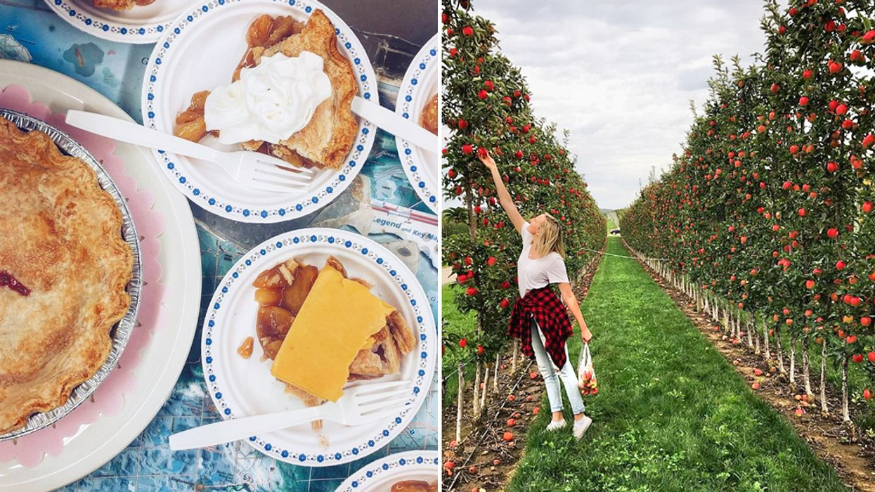 This Incredible Driving Route In Ontario Will Take You To The Best Apple Pie Spots