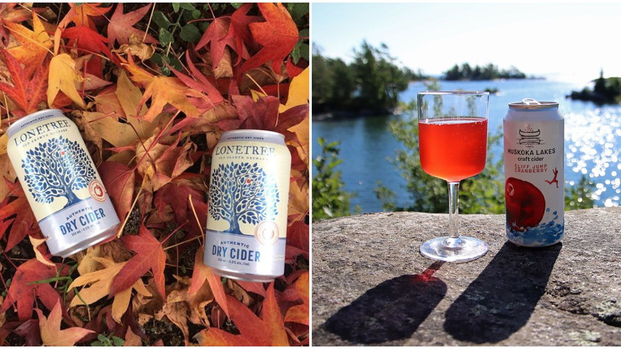 4 Crisp And Delicious Fall Ciders That Just Arrived At The LCBO