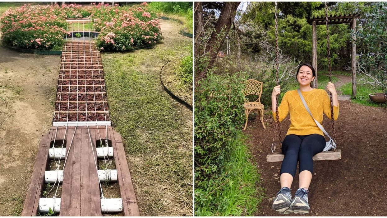 This Hidden Garden In Austin Is A Floral Paradise With A Giant Guitar Rose Garden