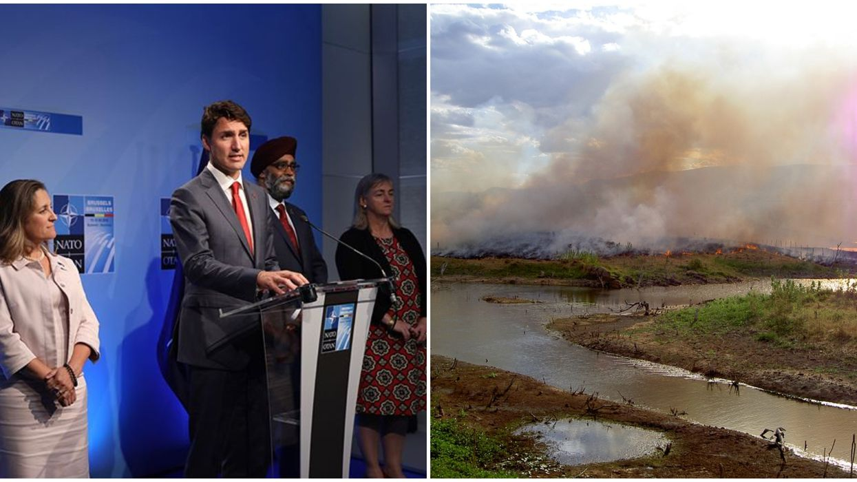 The Amazon Rainforest Has Been On Fire For Weeks & People Want Justin Trudeau To Fix It