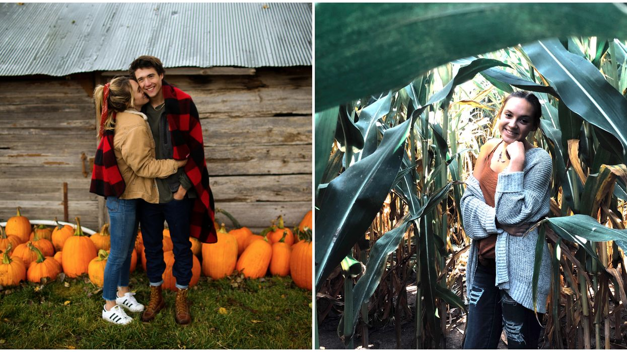 21 Things To Do In Calgary That You Have To Add To Your Fall Bucket List