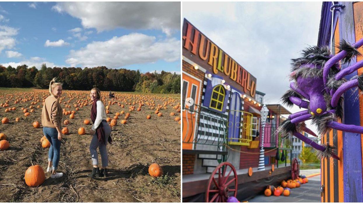 9 activités gratuites ou presque à faire en octobre à Québec pour profiter de l'automne