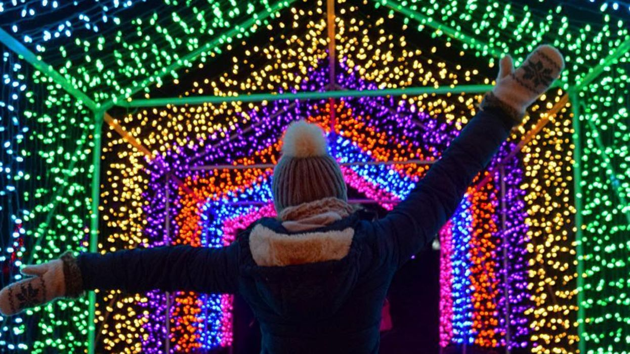Edmonton Zoo's Holiday Lights Festival Zoominescence Brings Breathtaking Lights Next Month