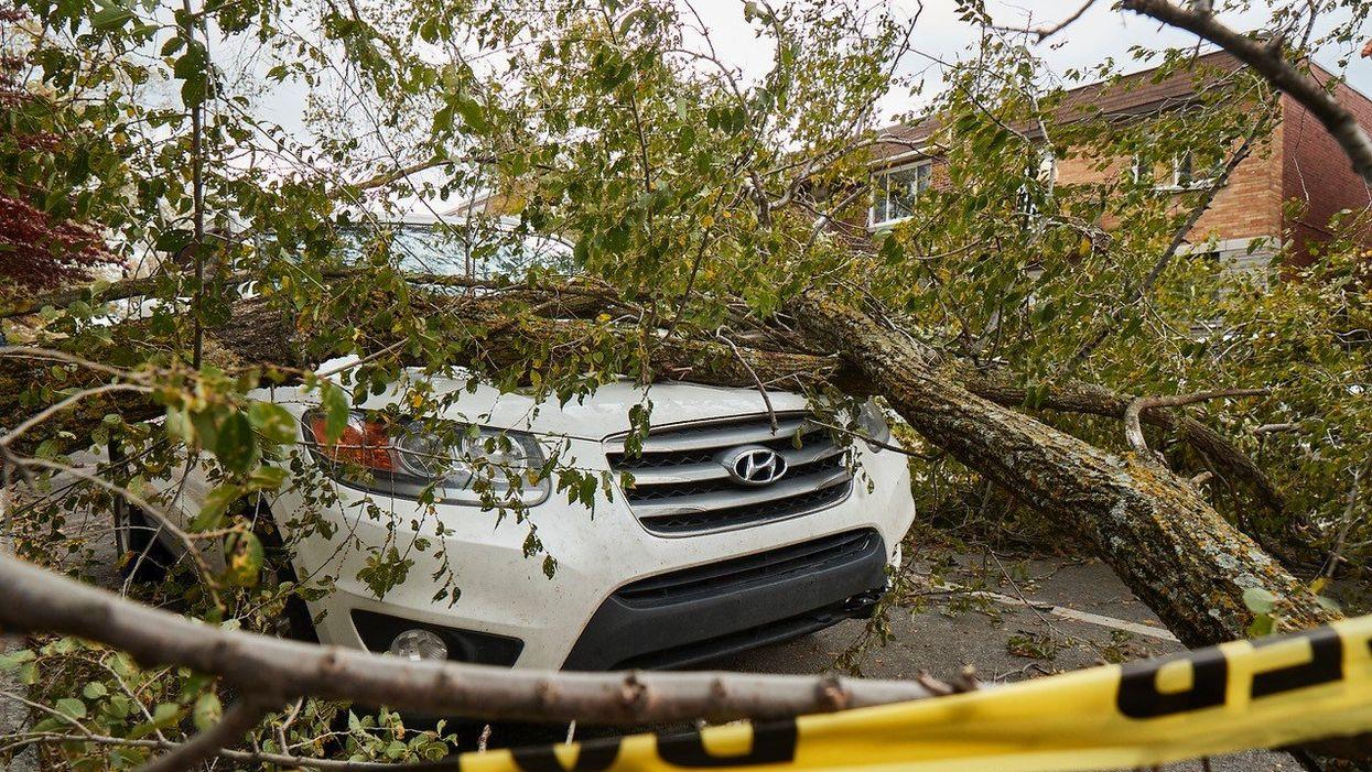 La tempête de l'Halloween 2019 a causé plus de 189 M$ de dommages au Québec