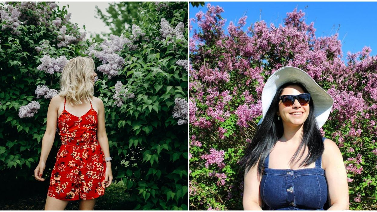 Ontario's Lilac Festival Is An Absolute Must-Visit Spot When Spring Has Sprung