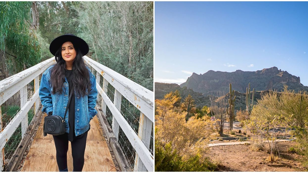 This Botanical Garden In Arizona Features A Suspension Bridge Over A Creek