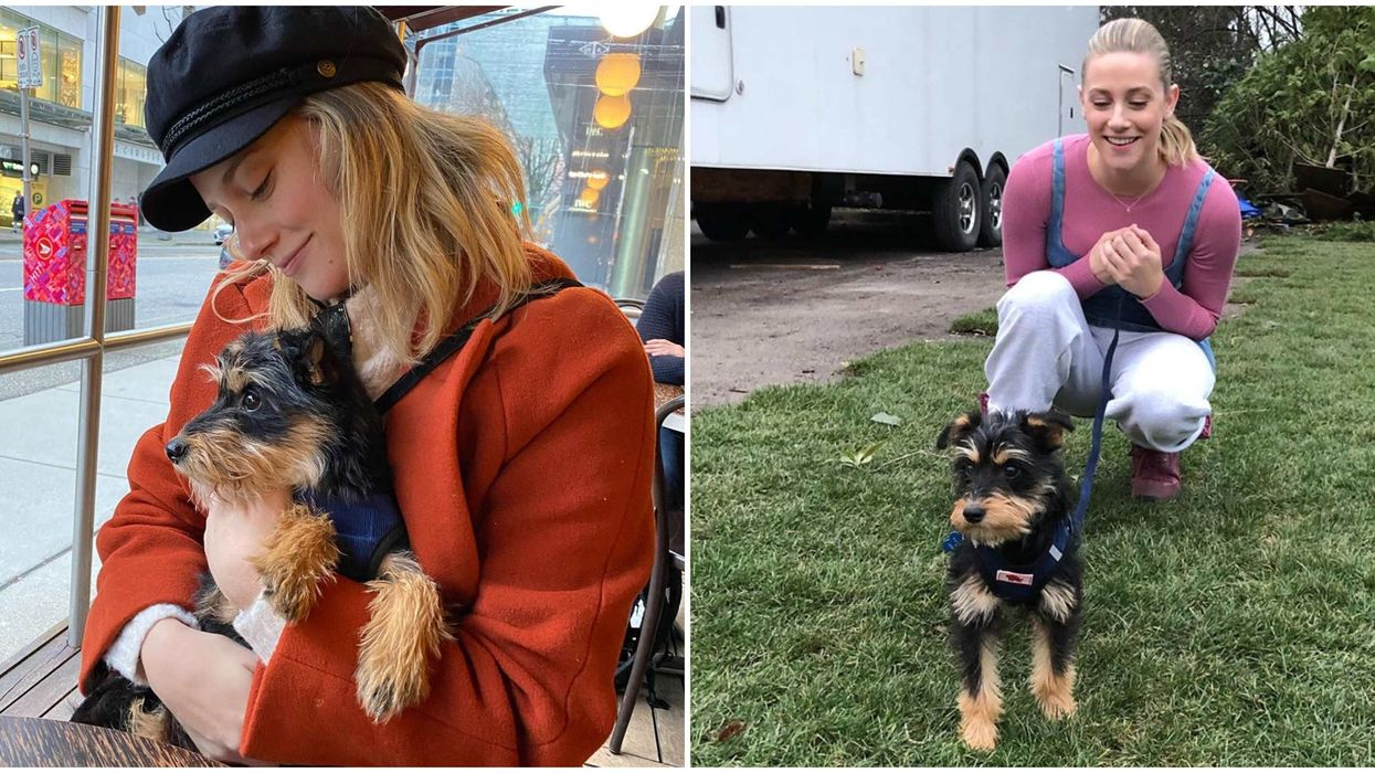 """Lili Reinhart From """"Riverdale"""" Adopted An Adorable Pup From A BC Dog Rescue"""