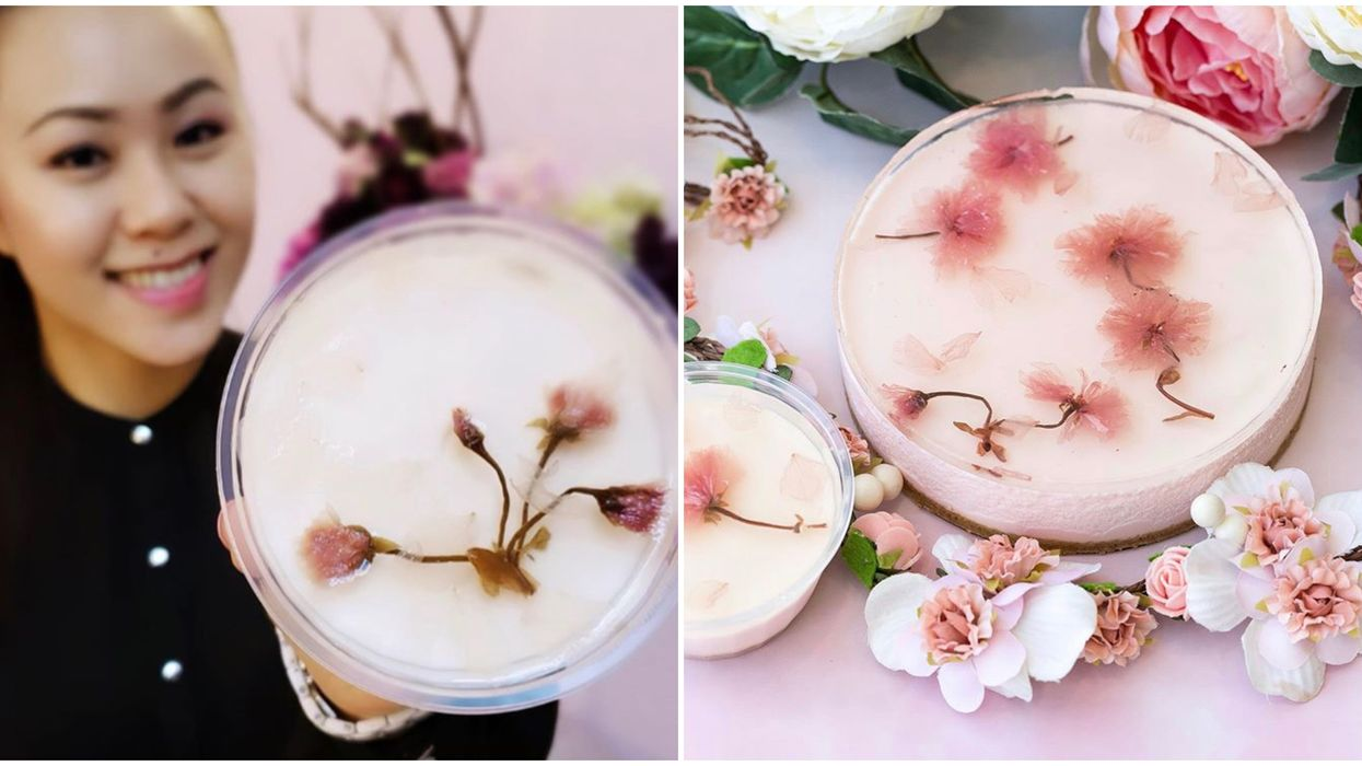 Toronto's Cherry Blossom Cheesecake Will Bring Spring To Your Home