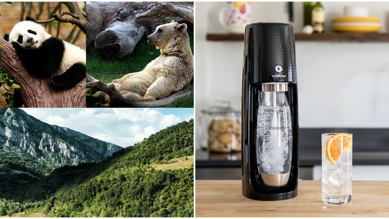 SodaStream Has An Important Message This Earth Day While Everyone's At Home