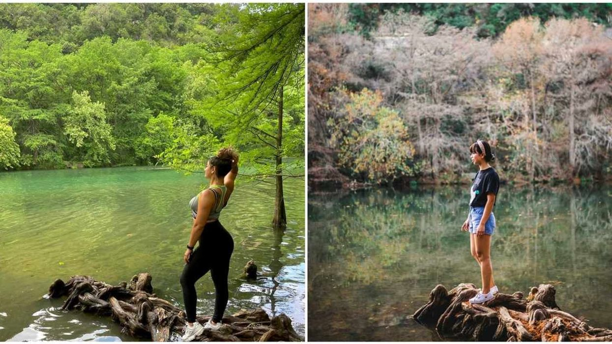 There's A Hidden Island In Austin With Enchanting Emerald Water