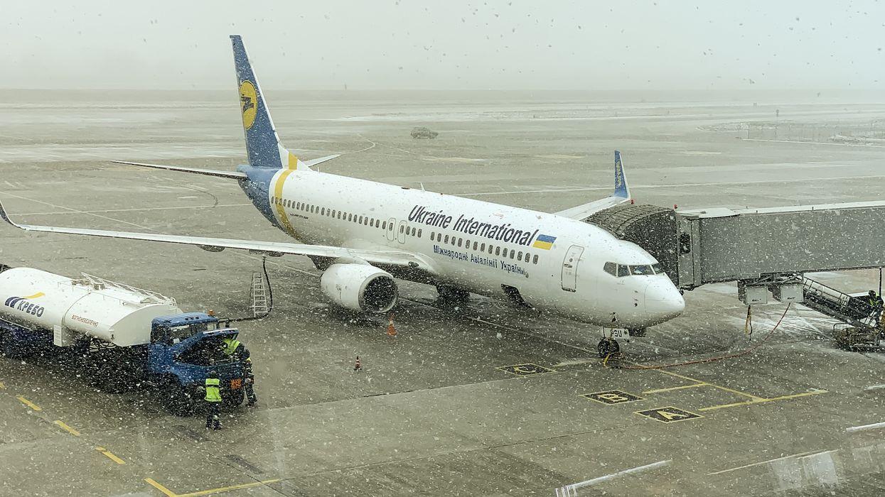 Ukraine International Airlines Flight Arrives In Toronto With Dozens Of Dead Puppies On Board