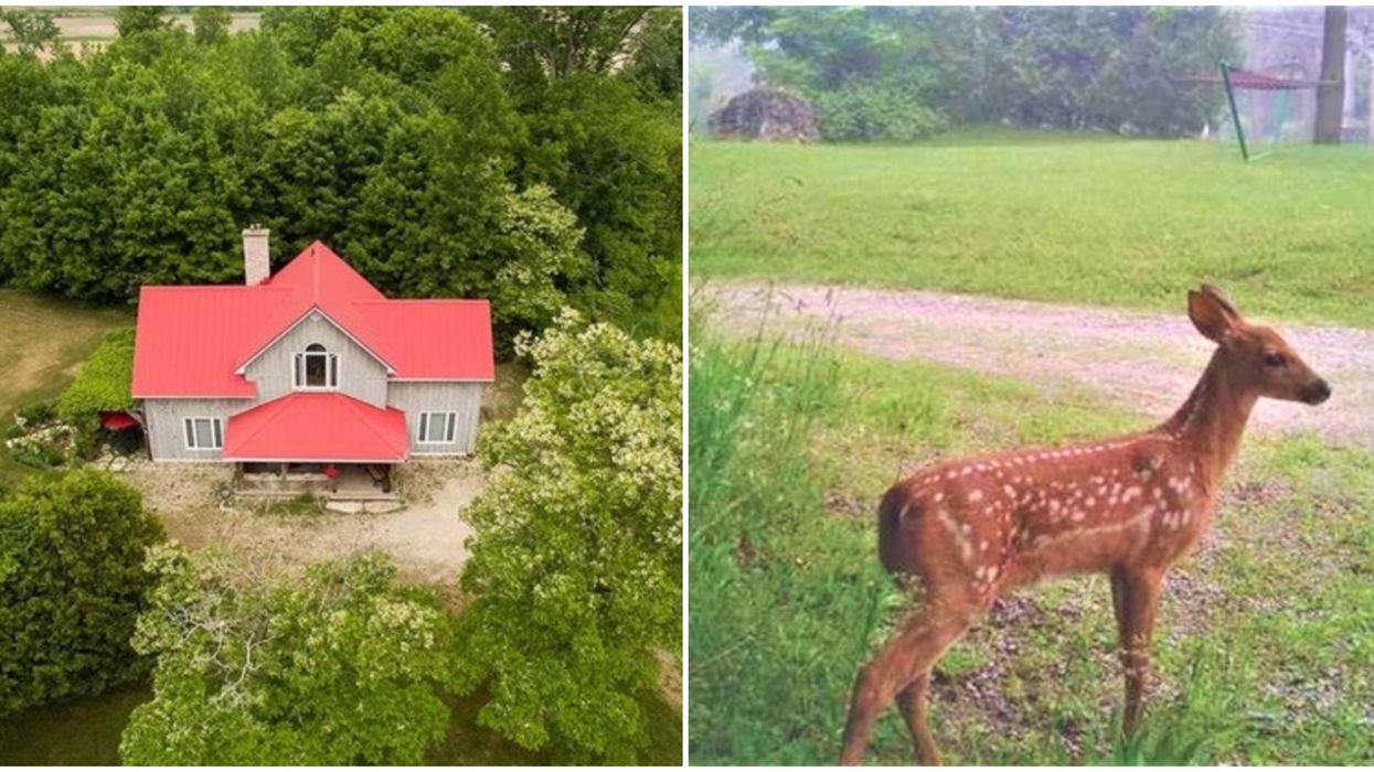 This House For Sale In Ontario Comes With 100-Acre 'Winnie The Pooh' Woods