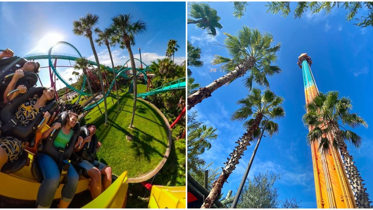 Busch Gardens Tampa Ticket Deal For Residents Give Unlimited Park Entry All Year For Cheap